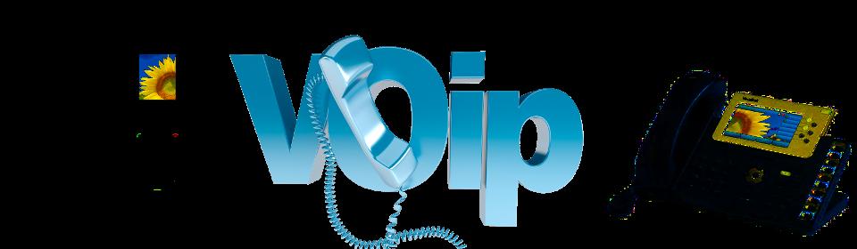 Voix sur IP (VoIP)